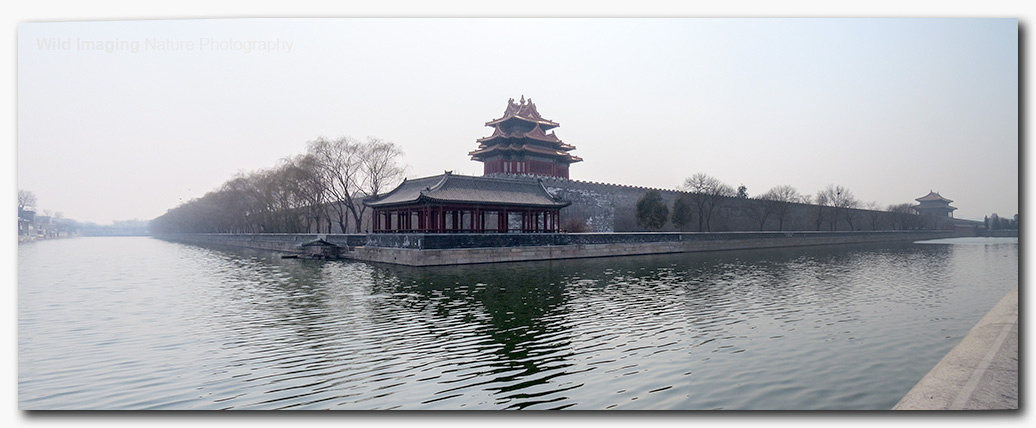 Forbidden City Wall and Moat