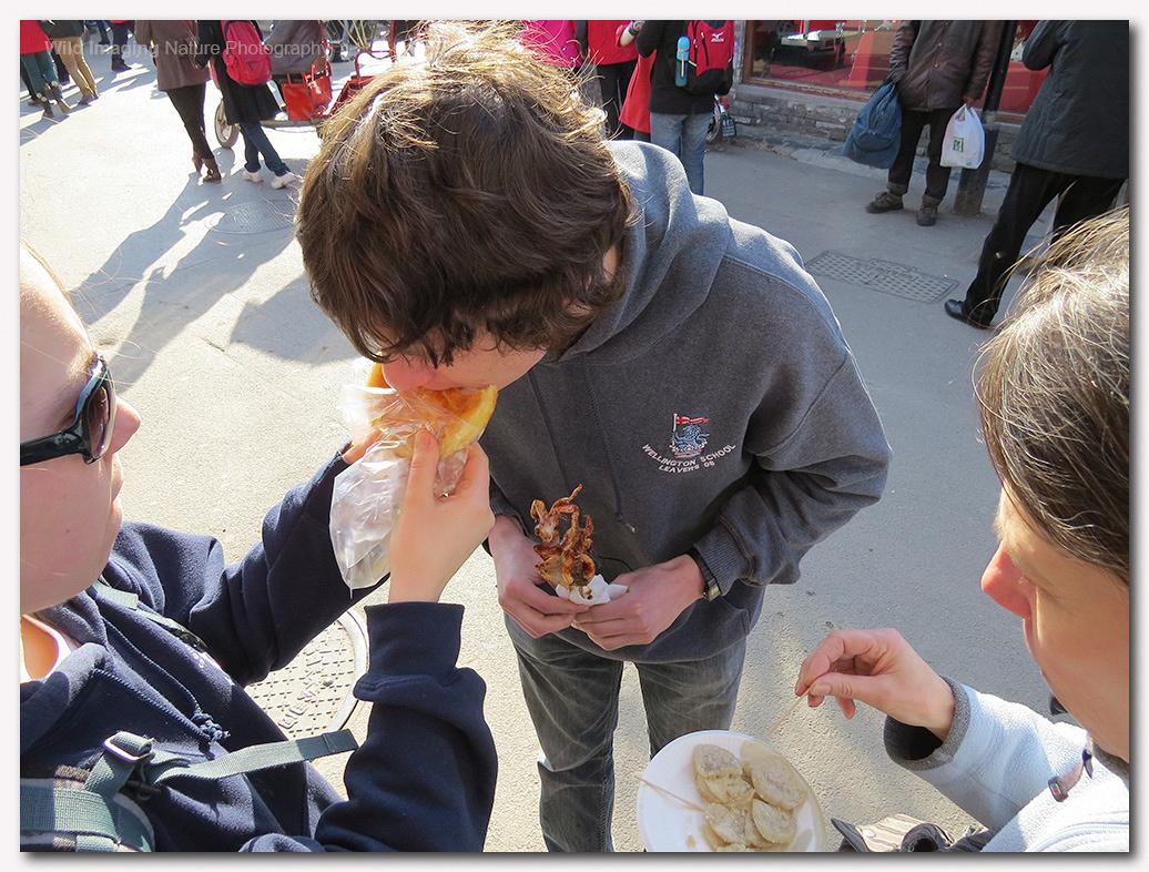 Sampling the street food