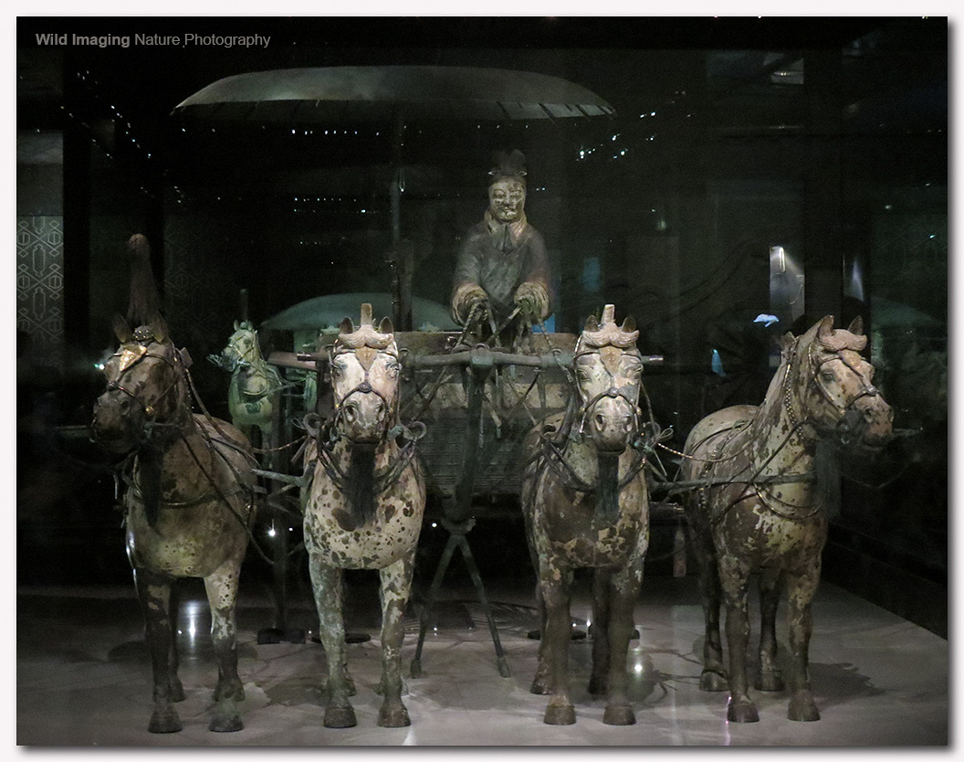 Bronze Chariot and Horses 1