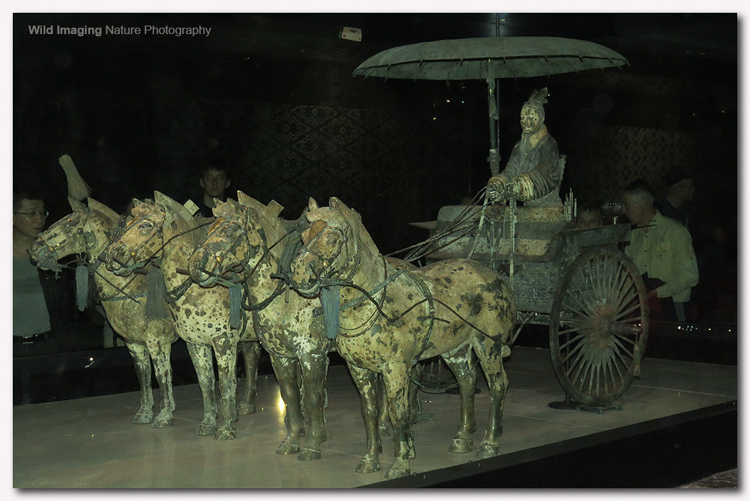 Bronze Chariot and Horses 2
