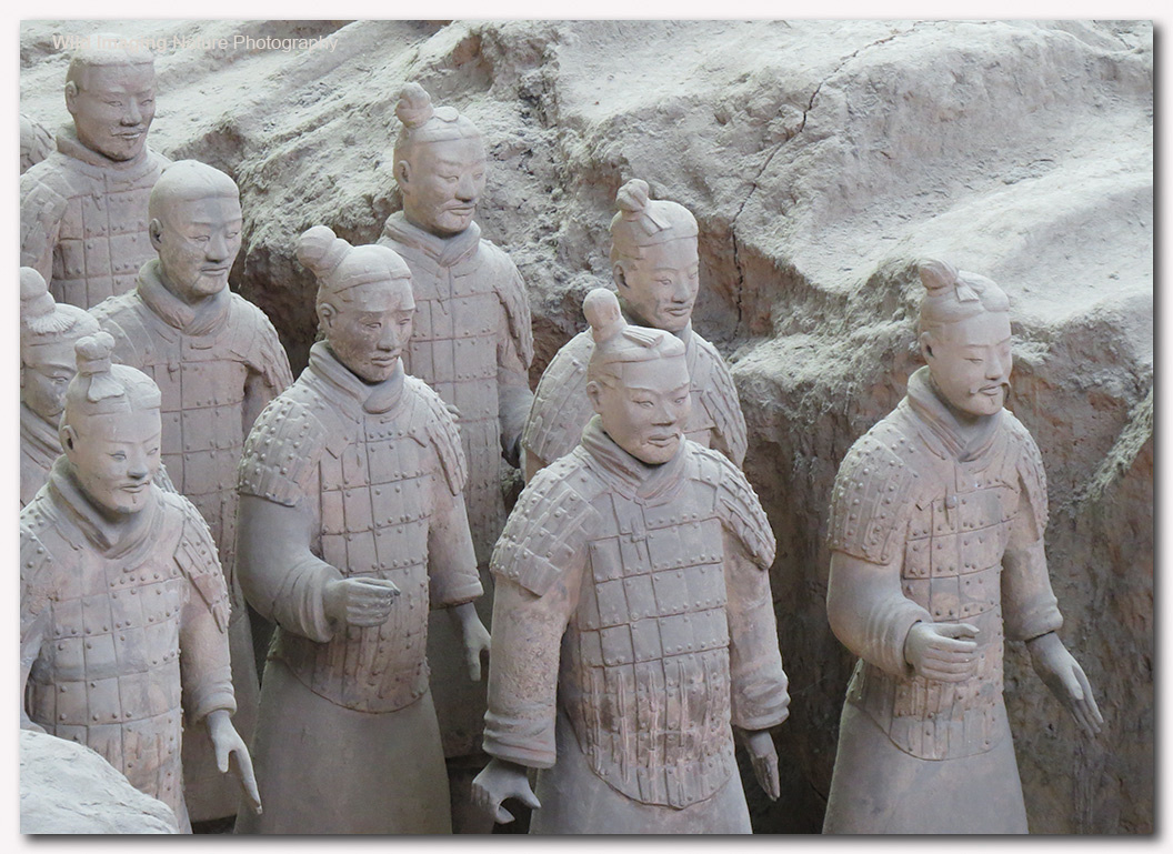 "terracotta warriors investigation Author frances wood notes in her study ""china's first emperor and his  terracotta warriors"" (2007) that the figures constitute ""the most extraordinary  example of."